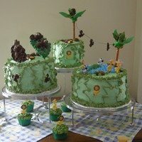Baby Shower Safari All cakes are covered in buttercreme and also filled with buttercreme, except one that is filled with white chocolate ganche'. The...