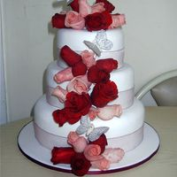 Fresh Roses Wedding Cake - Pinks And Reds   Fondant covered with fresh roses.