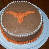 Longhorn Cake 2 I done this cake for a friend who is a true Longhorn fan.