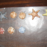 "Sea Shells White Chocolate Fondant "" Sea Shells "" painted with luster dust . Making these for sons Sand Castle Wedding Cake . Will post..."