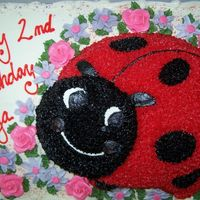 Lady Bug Birthday Cake A birthday cake done in buttercream. I kinda winged the daisy-type flowers. It was fun. =)
