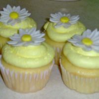 Yellow Daisy Cupcakes I made these for a picnic at the home of my fiance's boss. They were quick and easy, but everyone oohed and awed. I definately made a...