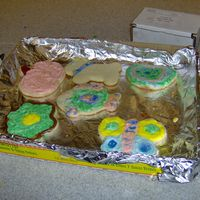Cookies From My Icing Fun Class These cookies were created by students in my course at the community college. They ranged from 5th - 8th grade.