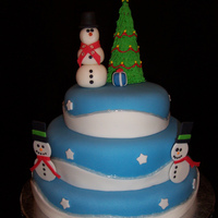 Christmas Cake For Office Party 2009