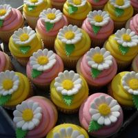 Daisy Cupcakes   White Cake with Lemon Curd or Raspberry Filling and Buttercream. MMF flowers.