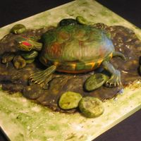 Turtle Cake 4D turtle cake done for a turtle lovers b-day. The shell is cake and the rest is made of gumpaste and pastillage. TFL!