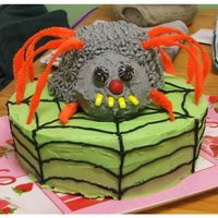 Spider Cake   This was a first attempt straight from a picture its not the best but it went down well.