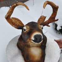 Hunting Season The horns are made of pulled sugar covered with fondant and everything else is cake. Did some airbrush to finish it..