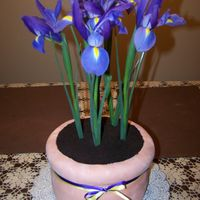 Mother's Day Flower  This is my version of a potted flower for mother's day. The cake is three 8' chocolate rounds with one 9' stacked on top. I...