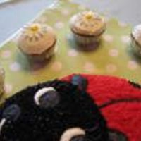 Ladybug.jpg This cake was for my cousin turning 19. The ladybug is the Wilton pan, and the cupcakes are frosted with lemonade buttercream. The daisies...