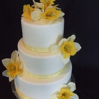 Summer Sun Dummy cakes with yellow ribbon and flowers. I am trying to beef up my portfolio.