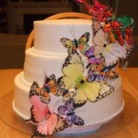 "Founder's Day Butterfly Cake This is for the organization my hubby works for. Butterflies are their ""mascot"". Top layer-dark chocolate fudge cake with Bailey..."