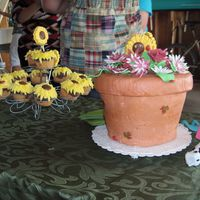 Flowerpot And Sunflowers flowerpot cake with gumpaste flowers and sunflower cupcakes.
