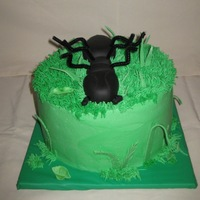 Dead Ant Buttercream frosting with Fondant ant. His legs broke so I had to use pipe cleaner.