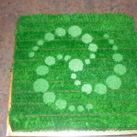 Crop Circle Cake All BC. The scale is an entire field. I made the design myself.