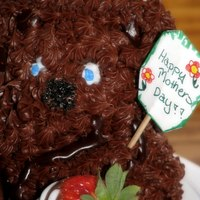 Beary Chocolate Cake