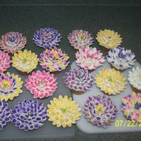 Cupcake Flowers  Saw these youtube and had to make them...Butterscotch cupcakes, frosted with buttercream...flowers are mini marshmallows cut diagonally and...