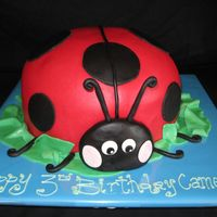 "Lady Bug carved from a 10"" round cake."