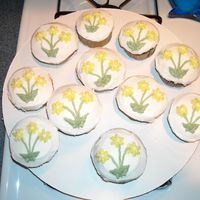 Flower Cupcakes   Chocolate WASC and Yellow WASC cupcakes iced in buttercream. Quickly made to go with a retirement cake.