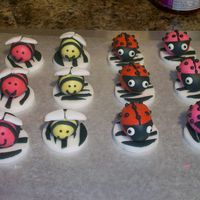 Bumble Bees, Lady Bugs, And Flowers Cupcakes toppers for the a birthday girl