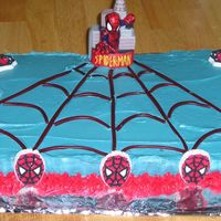 Spiderman this was my very first bday cake I have ever made, I used pull and peel twizzlers fot the web