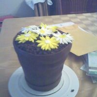 Flower_Pot_Cake.jpg  This is my first attempt at a flowr pot cake...Could be some improvements, but overall for a first attempt, I am happy with it..I made this...