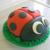 Ladybug   A lady bug made for my friend's charity auction. Chocolate cake w/Choc BC. Covered in fondant.