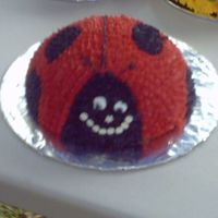 "Lady Bug   This was my nieces ""own"" cake for her 1st b-day."