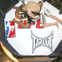 Cage Fighting Cake
