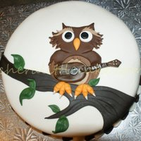 Owl I was asked if I could make a cake for an anniversary that represented the couple. The wife was well known for her owl collections and the...