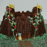 Bundt Castle This is a chocolate bundt cake using a Nordic Ware bundt castle pan.Royal icing for the decorations, shredded and dyed coconut, and little...