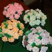 Dscf3677.jpg Cupcake bouquets I made for my daughters teachers. I was so frustrated because my icing was melting and my mixer broke while I was making...