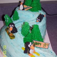Birthday Snow Skiing  Was made for my nephew who for his 8th birthday got to go snow skiing for the 1st time so he thought he needed a snow skiing cake for his...