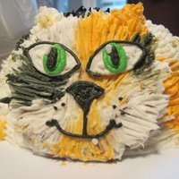 Calico Kitty Cake Vanilla cake with vanilla filling and bc dream frosting. Body is soccer ball pan, head and tail are oatmeal chocolate chip cookies.