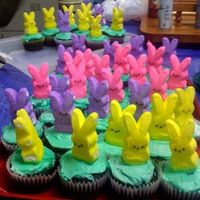 Peeps Army Peeps 'glued' to top of cupcakes with icing.Made for students helpers in my office - - - they love baked goog!!!