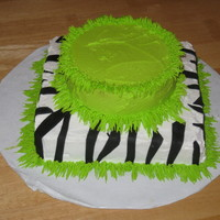 Zebra Print And Green bottom layer is zebra print, top layer bright green. A simple one layer cake for a 16th birthday