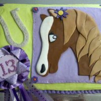 Horse Cake 9x13 sheet cake, vanilla/vanilla, frosted in lime green buttercream with the horse plaque made of fondant. I know lots of people don't...