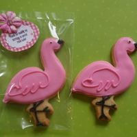 Pink Flamingo NFSC and Antonia74
