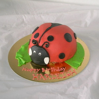 Harleigh White cake with chocolate buttercream filling. Black icing is chocolate, red is fondant.