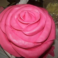 "Rose Cake  This is an 8"" chocolate cake iced with white chocolate butter cream. The petals are MMF and gumpaste mixed. I saw this cake on CC on..."