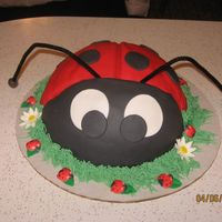 Lady Bug Cake   Lady Bug Cake with green buttercream grass with white daisies and 6 gumpaste lady bugs around the cake sitting on the grass.