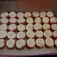 Swim Team Cupcakes Red velvet cupcakes and tinted gray buttercream for a high school swim teams colors