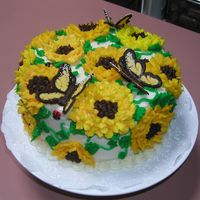 Sunflowers Red Velvet Cake with small chocolate chips. Center icing is chocolate mousse covered with cream cheese icing. The butterfly's where...