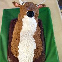 Deer Cake  OMG! This cake was a real task since I'm new at cake making and never had any training. I did this for my cousin's surprise 21st...