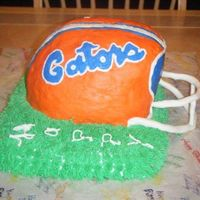 Uf Florida Gator's Football Helmet Florida Gator's Football Helmet carved from 3 8-inch round cakes. Buttercream icing and face guard made out of wire & gumpaste....