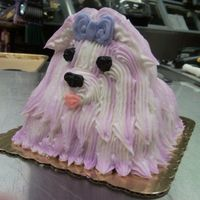 Purple Shih Tzu doggie cake I did at work (Harris Teeter).. she wanted a shih tzu and she wanted it purple- lol