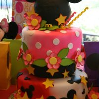 Mickey & Minnie Birthday Cake For my 2 grandchildren who are 3. Cake is fondant covered with gumpaste flowers and decorations