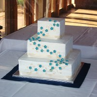 Vineyard Wedding This is my first wedding cake. I learned a LOT from this cake... this was the first time I've ever matched blue flowers. She was very...