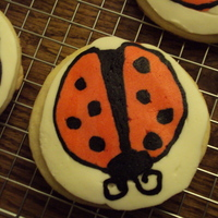Butterfly My first attempt at frozen buttercream transfers.