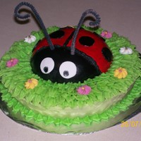 Ladybug Cake I made this for my neice's birthday. I had never really attempted anything like this before but everyone loved it and it was alot of...